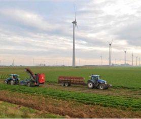 105-landbouw-eemsdelta